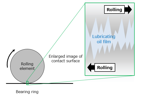 Fig. 2: No contact between a bearing ring and a rolling element (with lubrication)